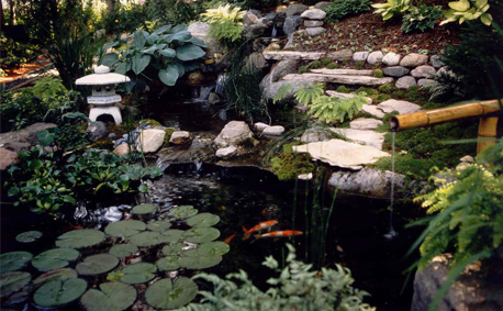 Minnesota landscape design company niwa design studio for Japanese koi pond garden design