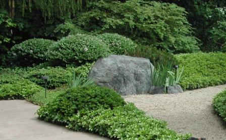 Minnesota landscape design company niwa design studio for Best plants for japanese garden