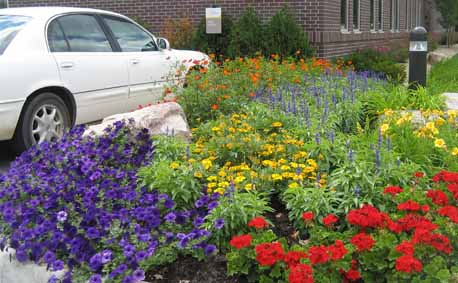 Flower Combinations For Flower Beds Flower Bed Annual Flowers
