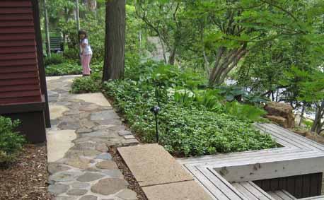 Japanese Garden   Nobedan Walk
