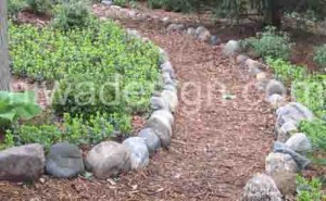 shredded wood mulch garden path
